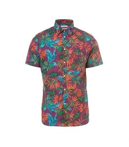 Paolo Pecora - Camicie - camicia con motivo di foglie